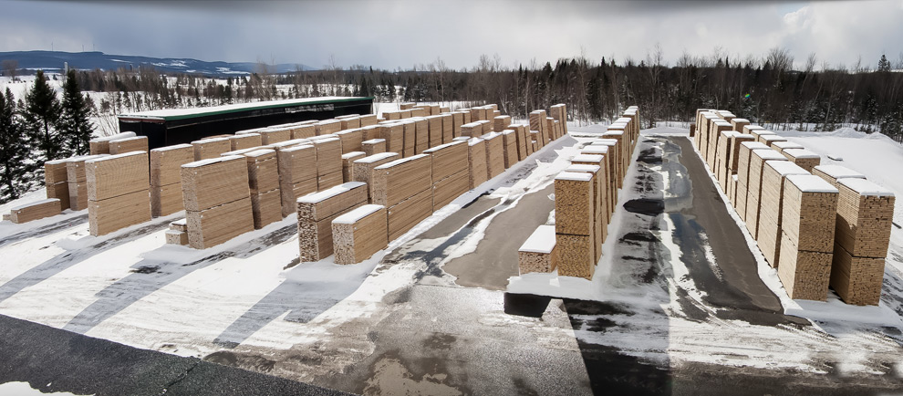Vexco Canadian Hardwood Lumber Manufacturer Supplier